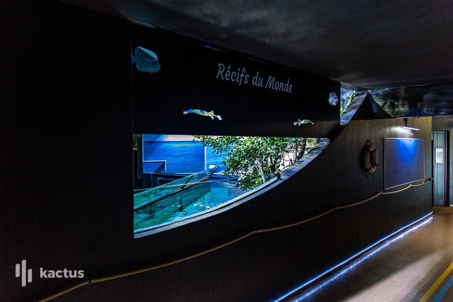 Aquarium de Lyon 13