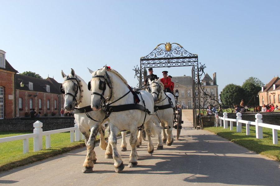 Hotel The Originals Le Manoir du Lys Le Haras du Pin