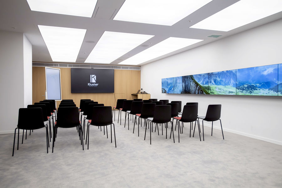 Kluster Business Center 25