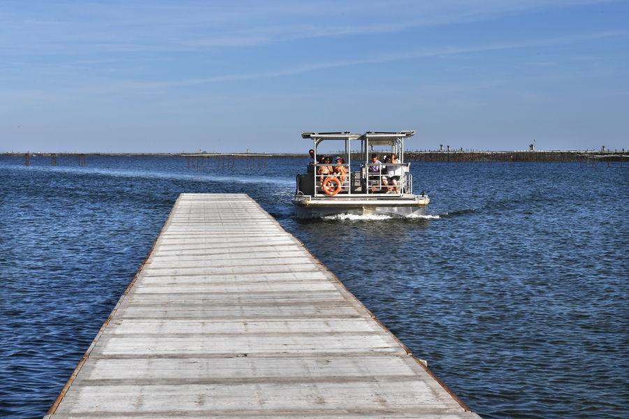 Comptoir de dégustation le St Barth' au bord de la lagune  Visite en barge ostréicole