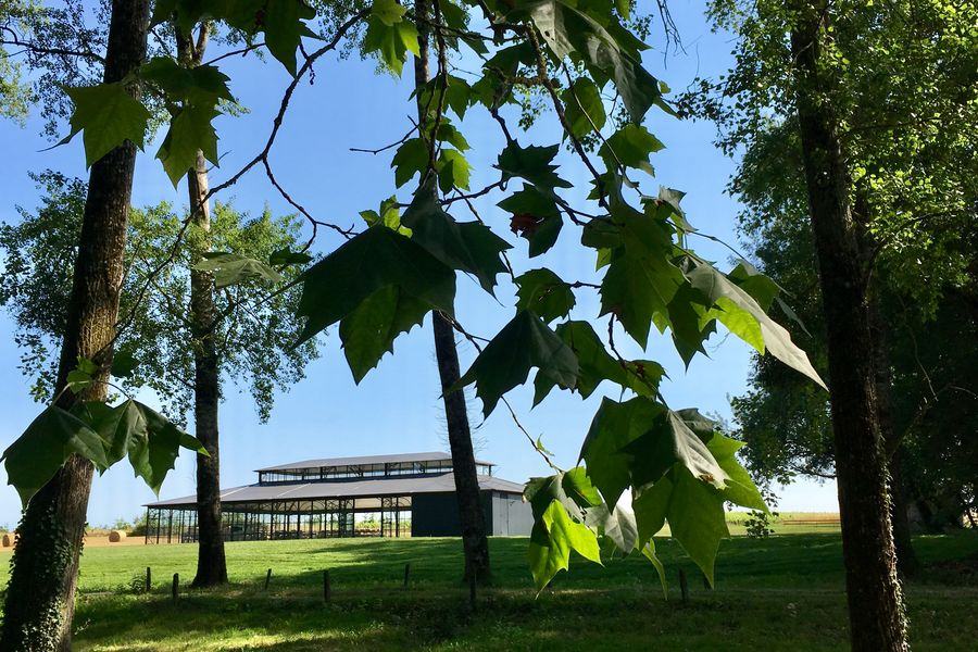Le Pavillon de l'Oiselinière Le Pavillon