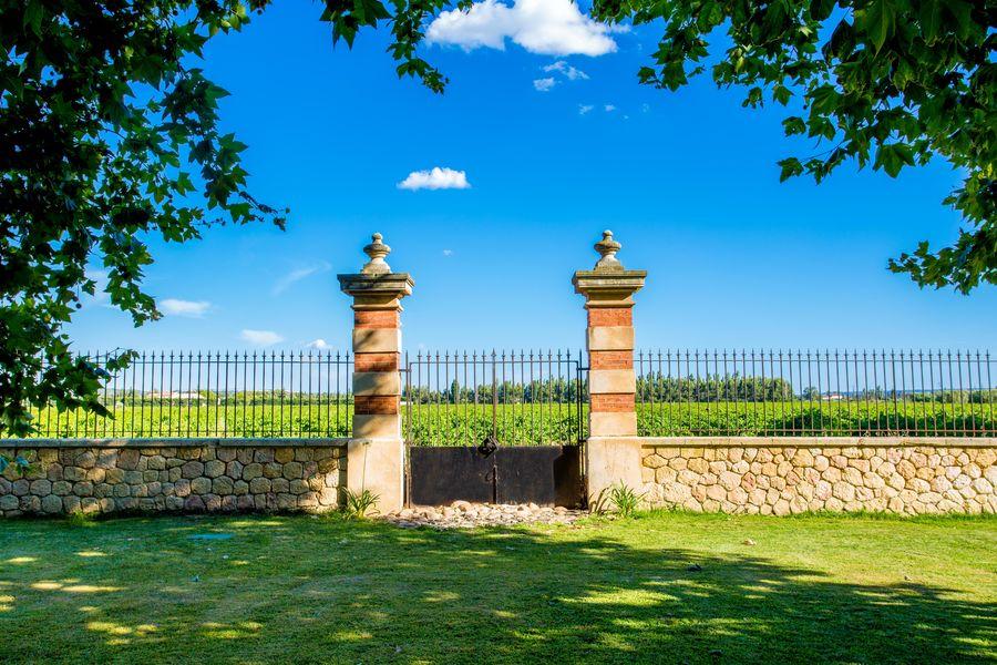 Château la Beaumetane la vue sur les vignes au château la Beaumetane