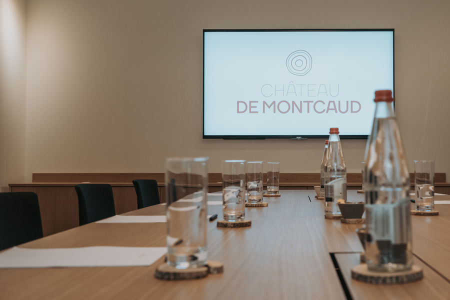 Chateau de Montcaud Petit Salon