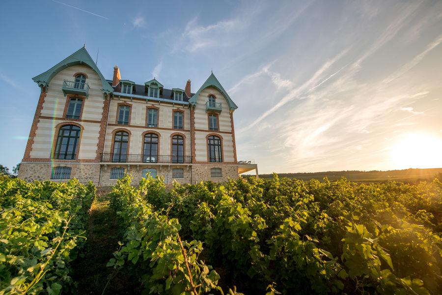Château de Sacy 7