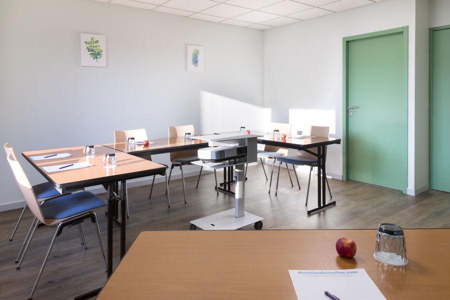 Ibis Styles Aix les Bains Domaine de Marlioz *** Salles de réunion - Parc / Epicéa