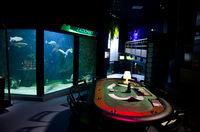 Aquarium de Lyon 32