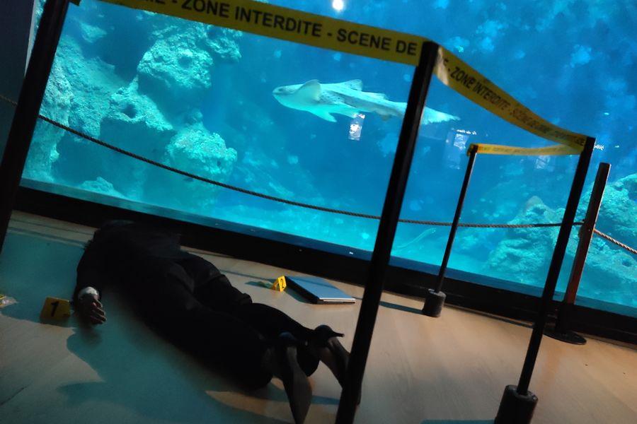 Aquarium de Lyon murder party