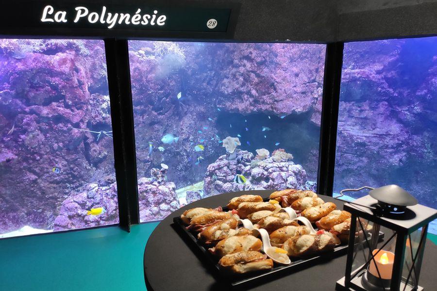 Aquarium de Lyon Récifs du monde
