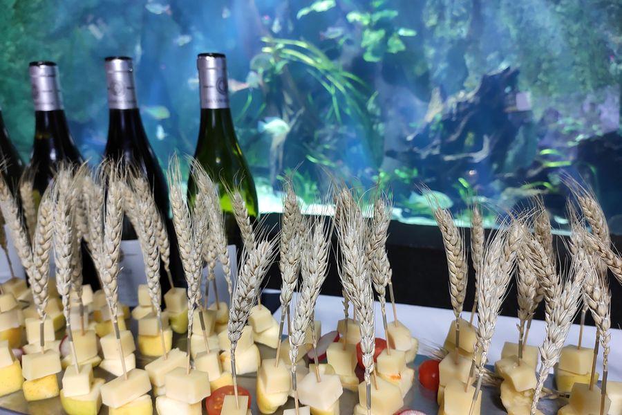 Aquarium de Lyon Trident Réception