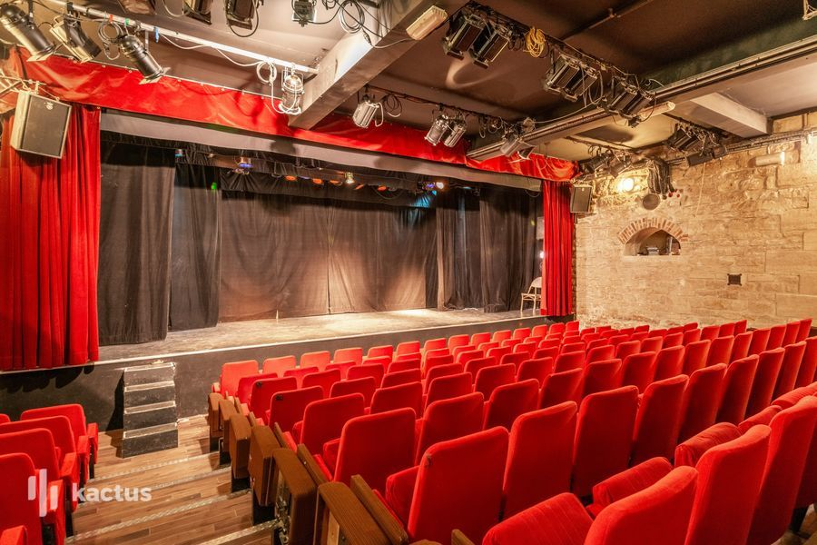 Théâtre du Gymnase Marie Bell  39