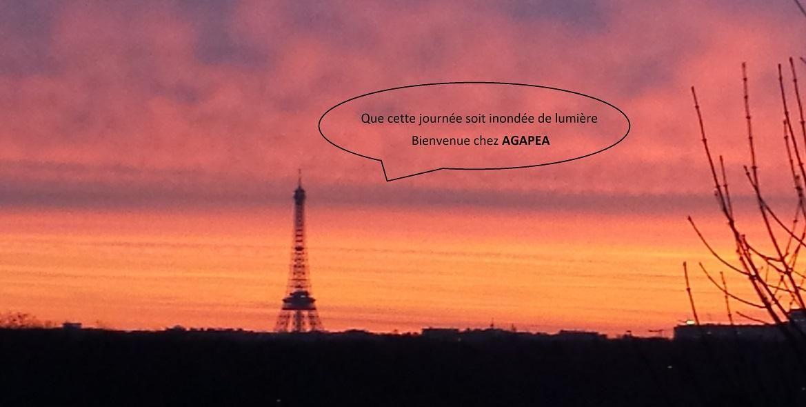 Agapea Garnier Vue Paris