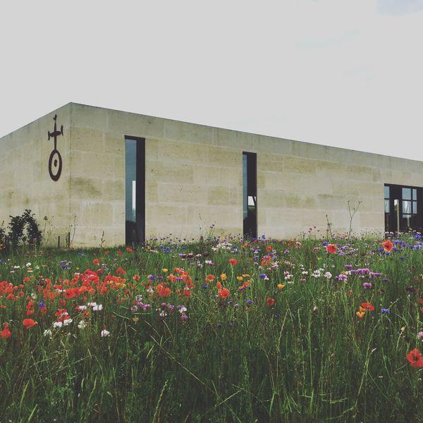 Domaine Enclos de la Croix L'Oliveraie Outdoor