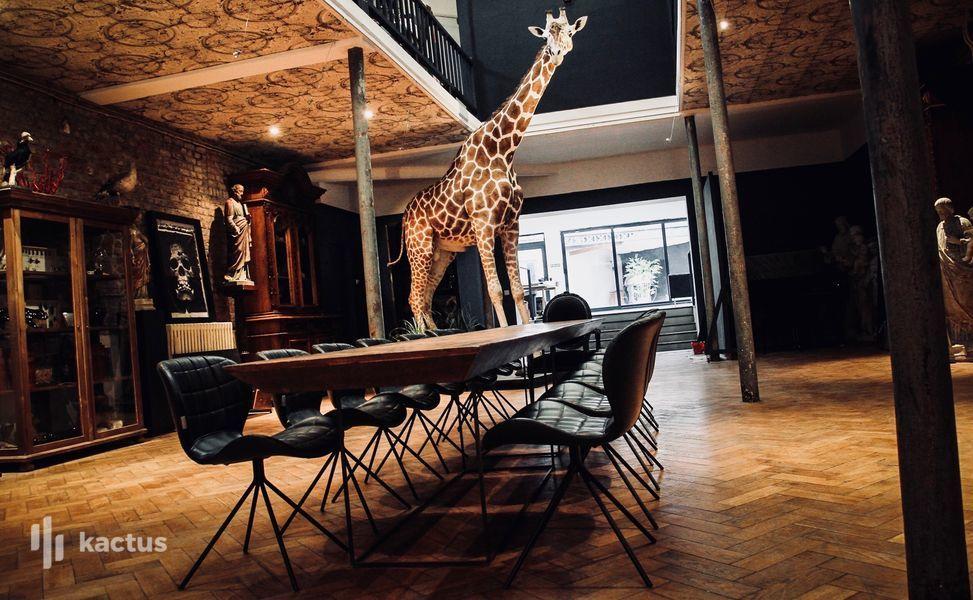 Le Loft Atypique Le Musée