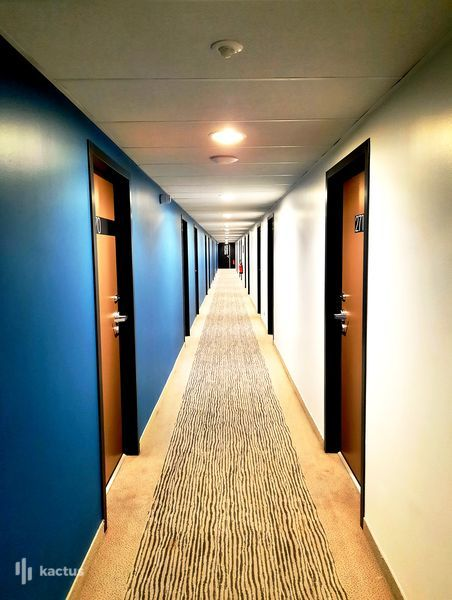 SURE HOTEL BY BEST WESTERN NANTES BEAUJOIRE *** Couloirs