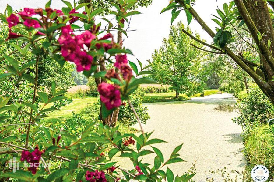 Les Jardins de Deauville *** 20